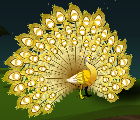 GoldenPeacock.png