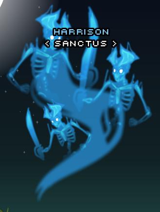SkeletalSpiritsCape.png